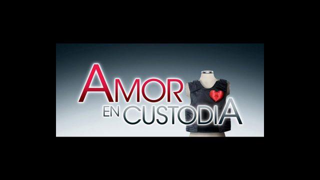 Nuevos promocionales de Corazón Salvaje y Amor en Custodia