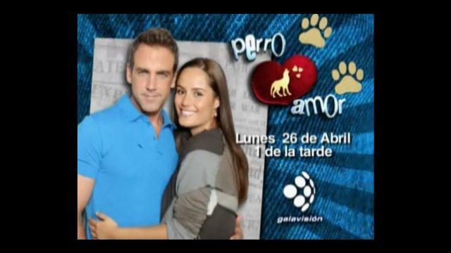 Galavisión estrena la telenovela Perro Amor
