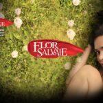telenovela flor salvaje estreno