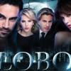 lobo-musica-telenovela