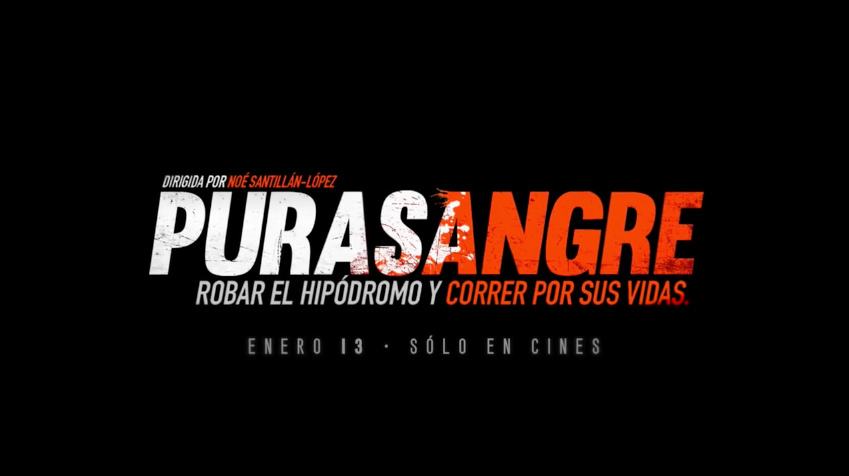cancion pelicula purasangre