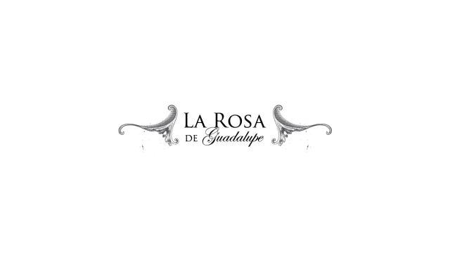 La Rosa de Guadalupe en Venevisión